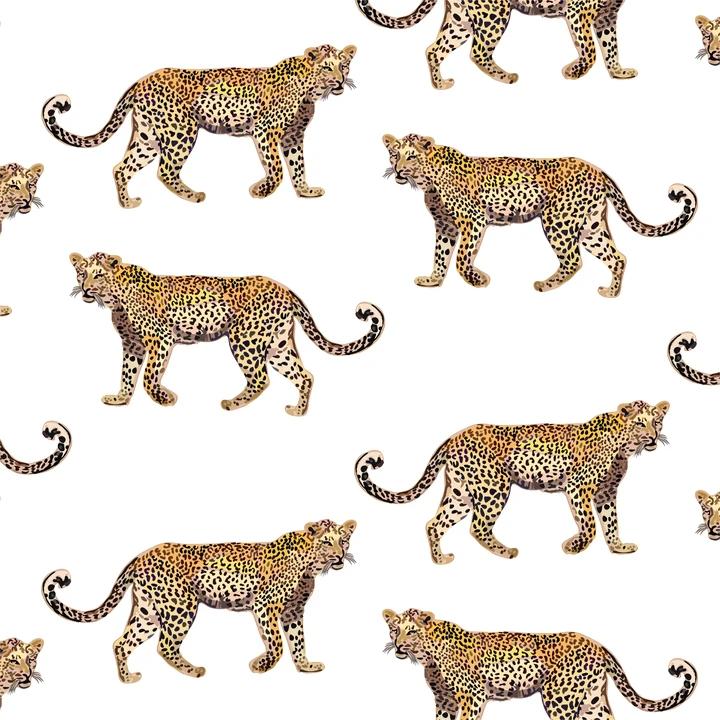 Cheetahs Peel Stick Wallpaper Cheetah Wallpaper Wallpaper Peel And Stick Wallpaper