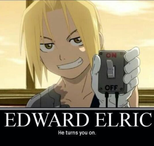 The Fullmetal Alchemist Brotherhood characters x Reader one