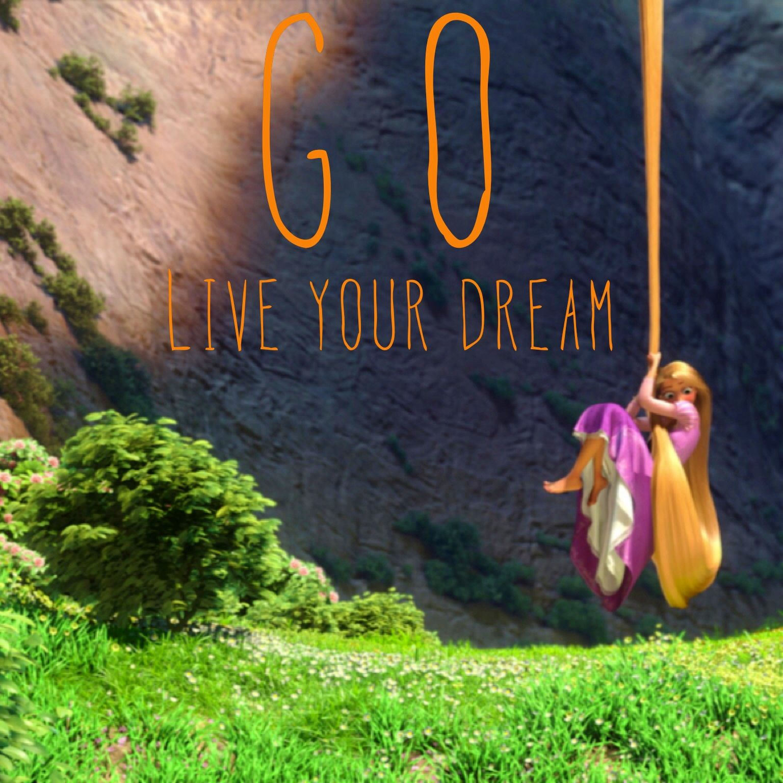 Image result for follow your dreams tangled