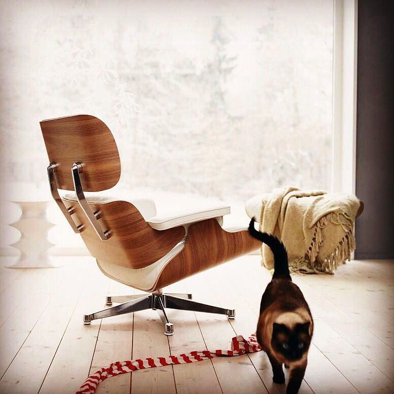 Famous #Lounge #Chair designed 1956 by Charles & Ray #Eames.