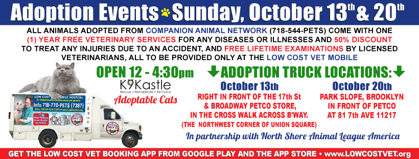 Save the dates! We have 2 adoption events October 13 & 20