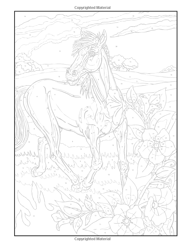 Dover Publications On Amazon Creative Haven Horses Color By Number Coloring Book George Toufexis Horse Coloring Pages Horse Coloring Coloring Books