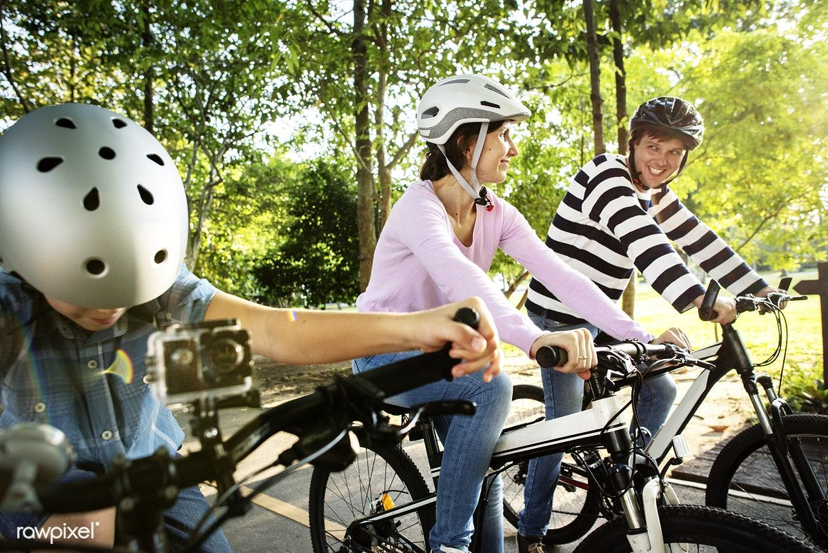 Download Premium Image Of Family On A Bike Ride In The Park 431140