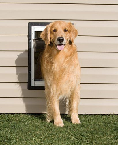 12819 16999 Petsafe Wall Entry Dog Door Large Easy To