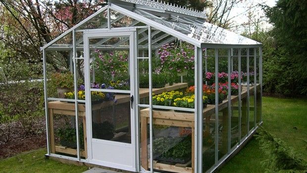 Backyard Greenhouse – Tips To Design a Suitable Home for Plants ...