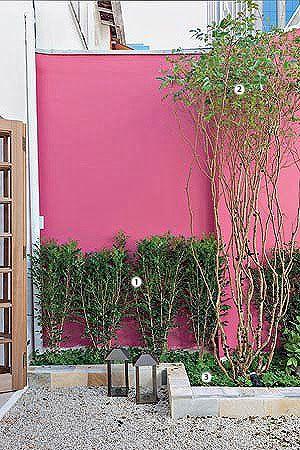 47++ Se puede pintar una pared pintada con cal inspirations