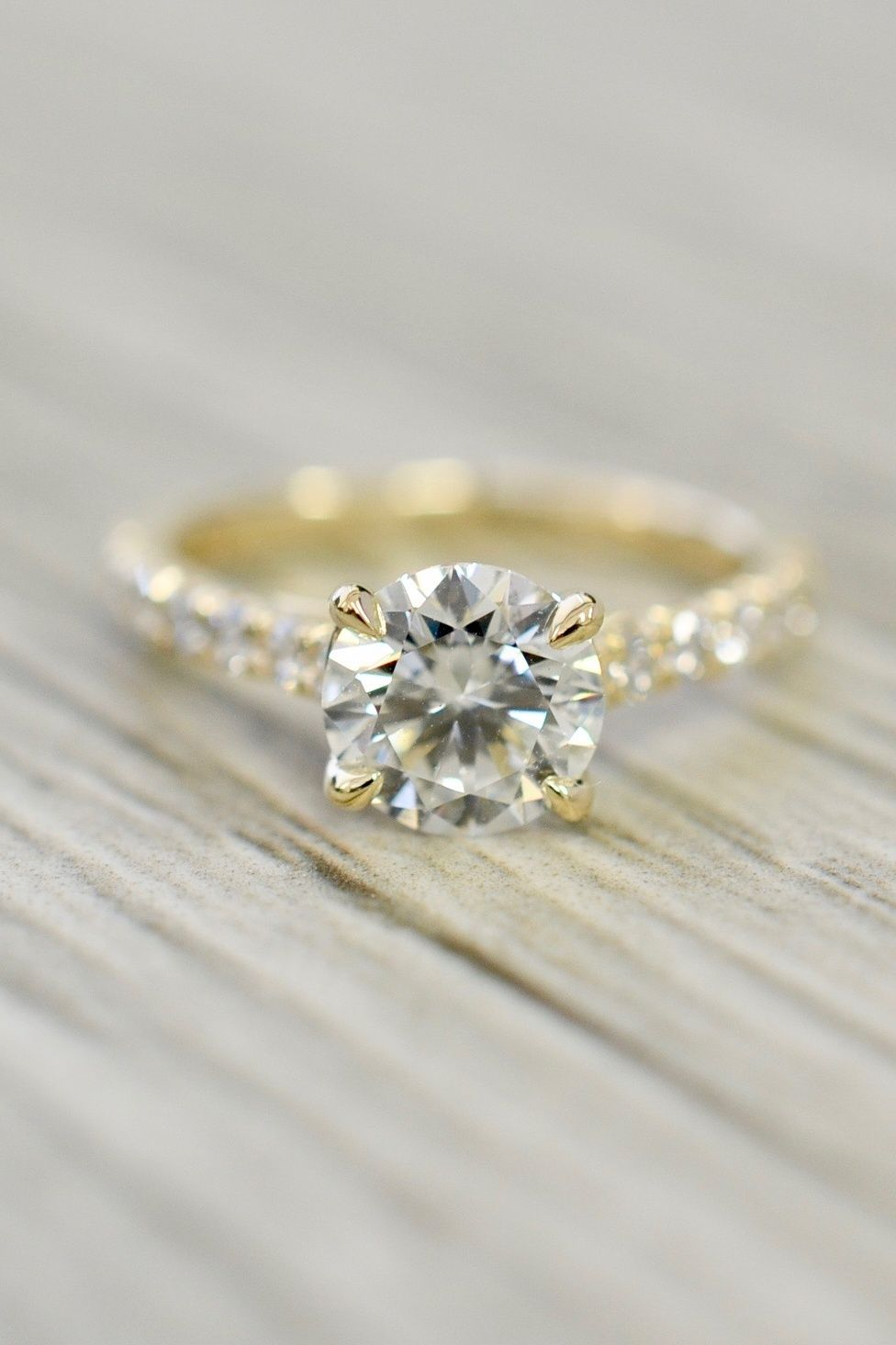 e76f5b8f46344 Round Brilliant in an Open Trellis Cathedral Engagement Ring in ...