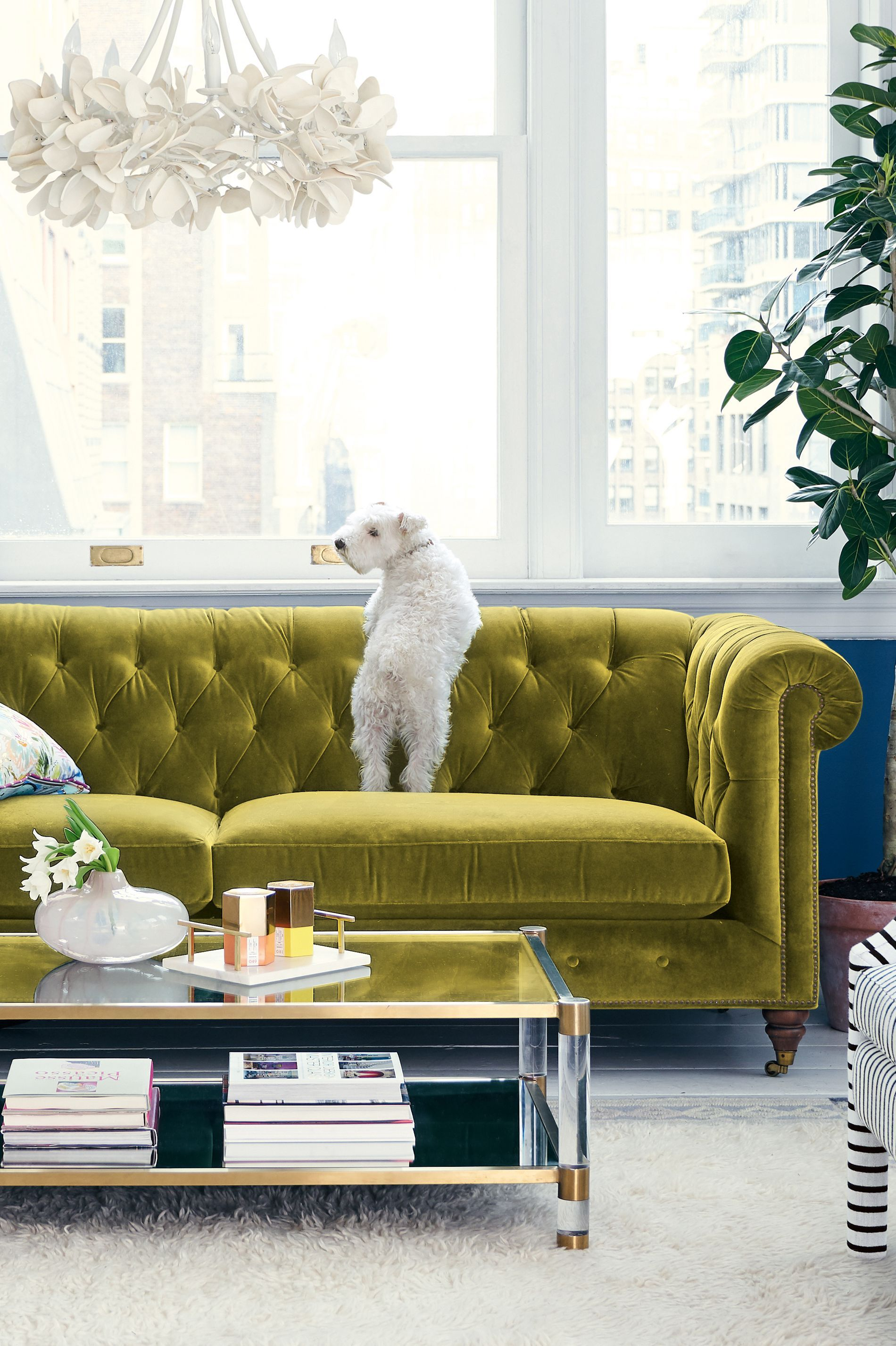 Lyre Chesterfield Two Cushion Sofa Cushions On Sofa Green Sofa Living Room Living Room Sofa