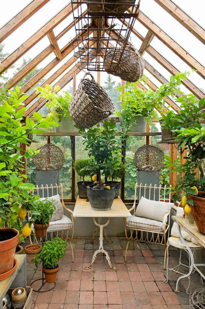 Green Room Garden Design: Greenhouse With A Scent Of Mediterranean