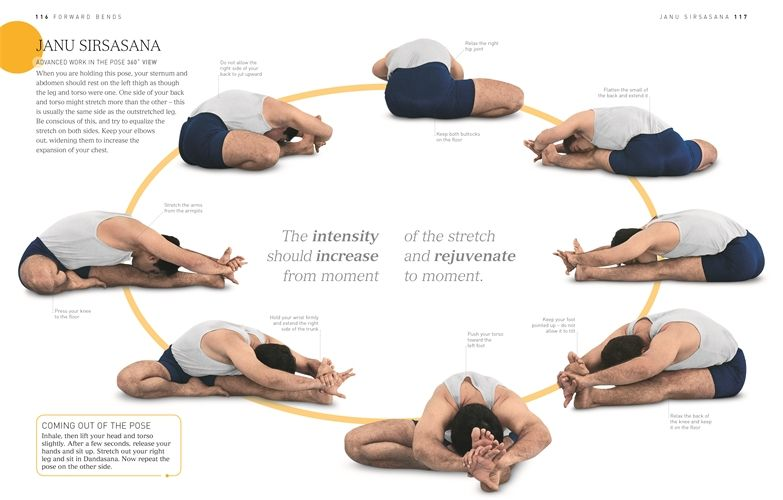 Janu Sirsasana Teaching Yoga Iyengar Yoga Yoga Forward Fold