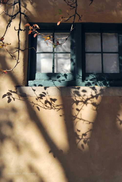 thephotographerssociety:   starrysurrealism:  ... | La vie en rose