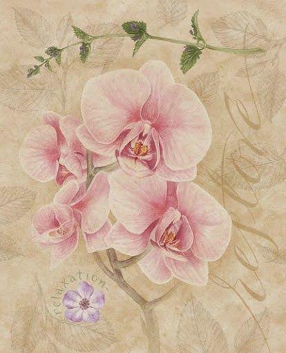 Laminas con flores para imprimir