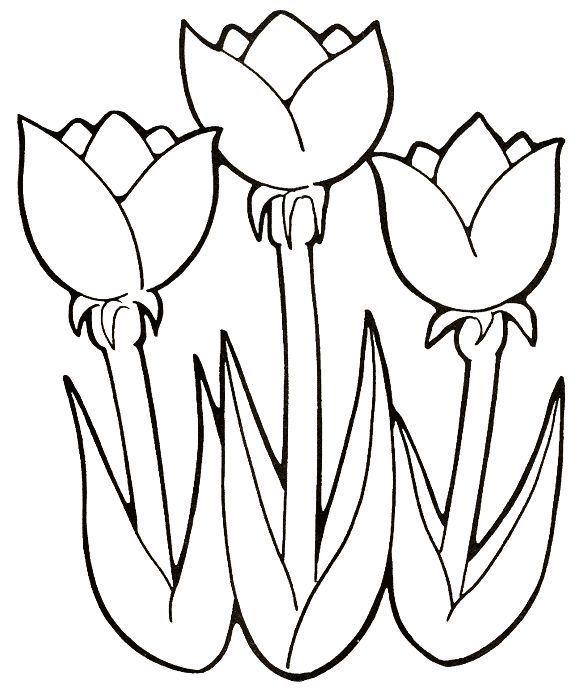 Pin De Angela Castano En Riscos De Flores Tulipanes Para Colorear Dibujos De Flores Patrones Para Bordar Mexicano
