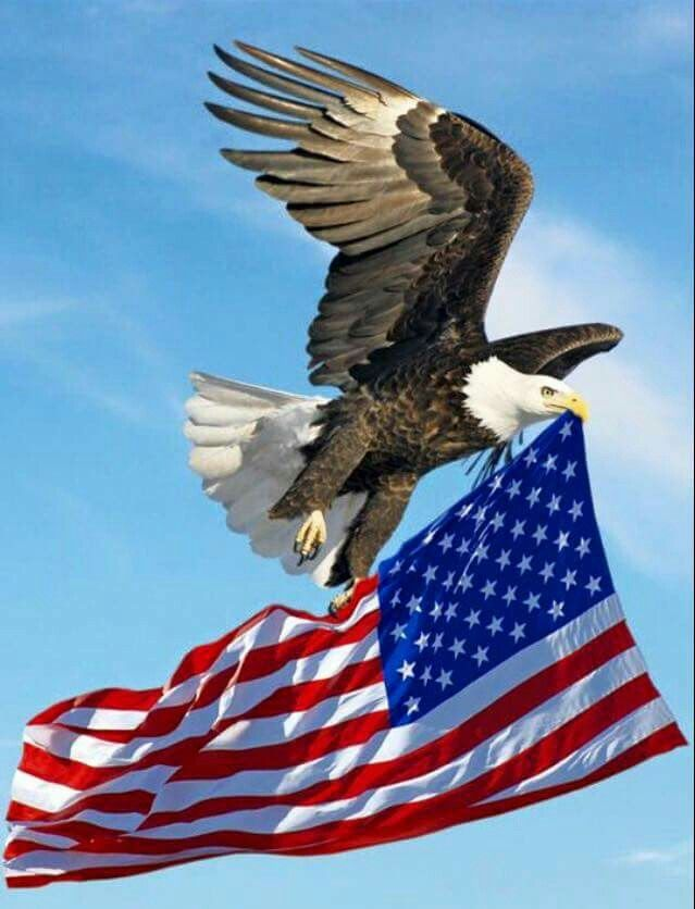 UNITED WE STAND SUNCATCHER US UNITED STATES PATRIOTIC JULY 4TH