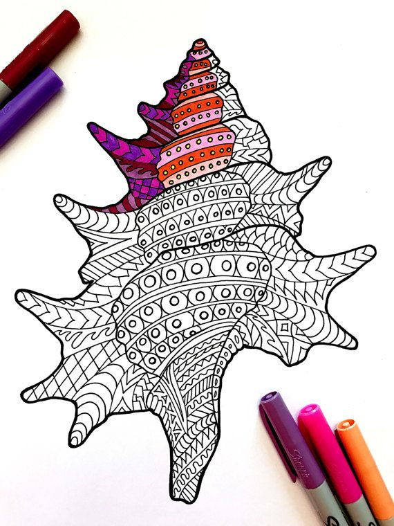 8 5x11 Pdf Coloring Page Of A Seashell This Is A Digital Download Pdf This Is Not A Physical Product Cuadros Con Hilos Dibujos Zentangle Estampados Zentangle