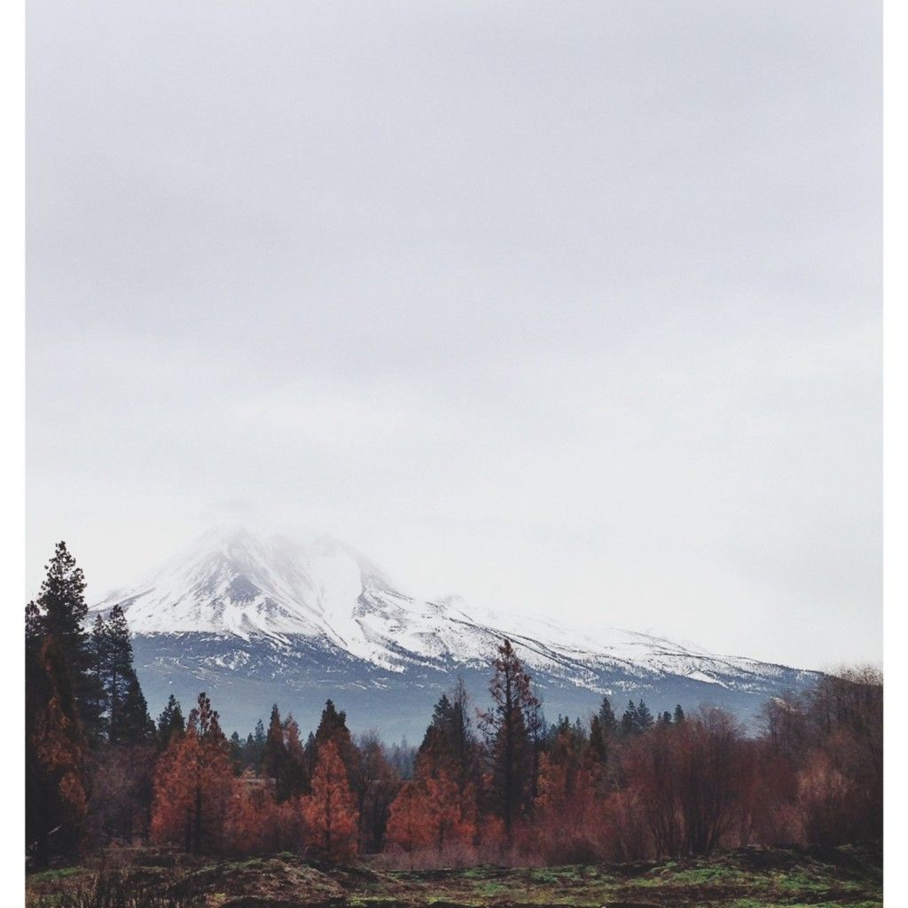 Mt Shasta from Weed, CA   At an elevation of 14,179 feet (43…   Flickr
