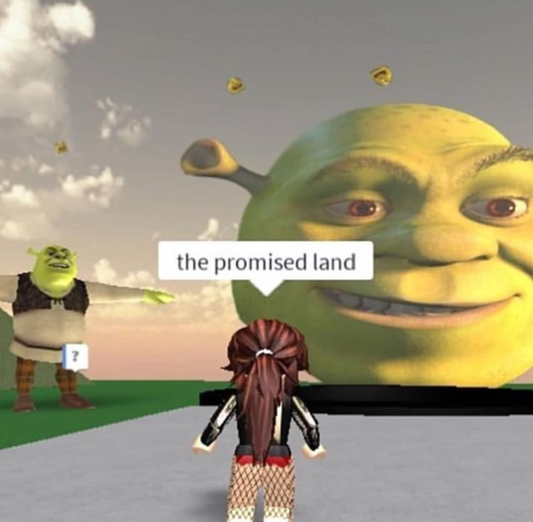 Check Yourself Before You Shrek Yourself Roblox Shrek Farquaadhater Posted On Instagram Robloxdoubletap Shrekful Tags Shrek In 2020 Stupid Memes Roblox Funny Really Funny Memes