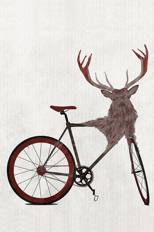 Hand Crafted Bicycle Handlebars Made Of Genuine Deer Antlers And