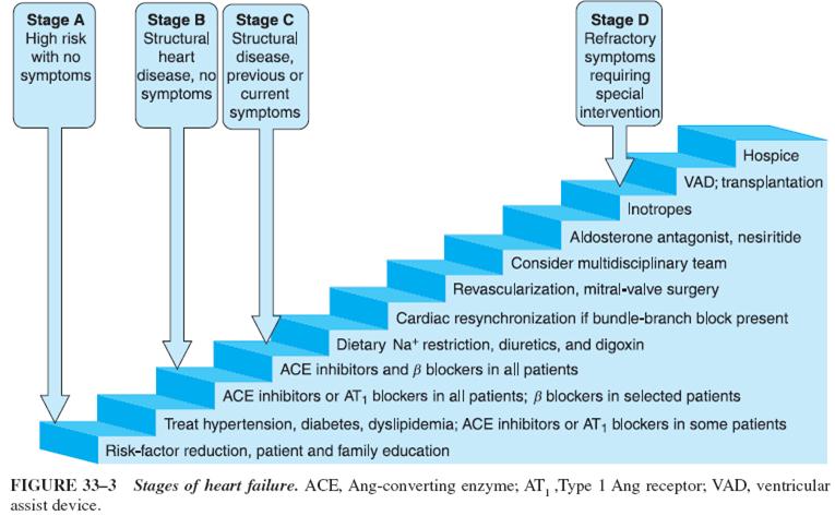 Congestive Heart FailurePharmacological Approach III
