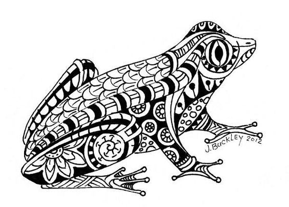 Amphibien 13 Frog Coloring Pages Snake Coloring Pages Animal Coloring Pages