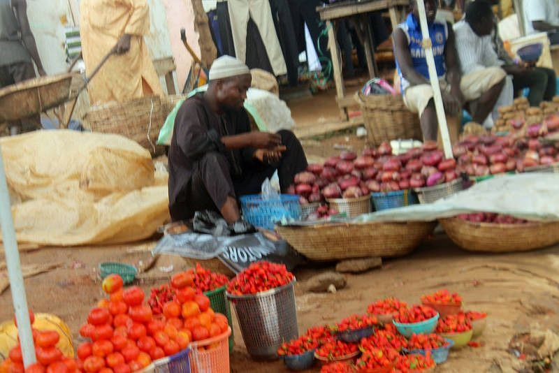 Tomatoes & Onions | Dutsen Market FCT Nigeria | #JujuFilms #Tomatoes #Nigeria #DutsenMarket #Onions