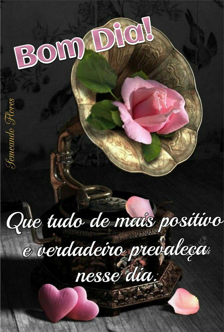 Bomdia Crissilva Pinterest Com Imagens Mensagens De Bom Dia