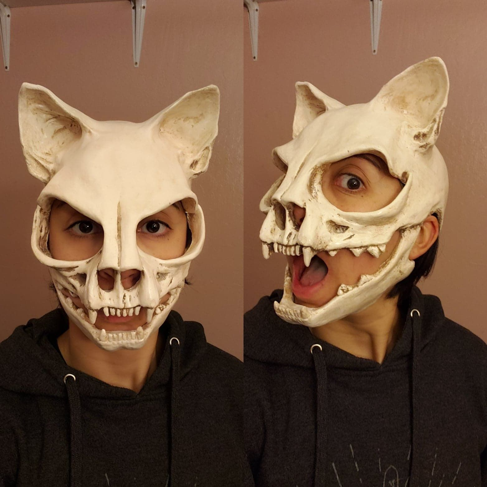 Sami added a photo of their purchase Cat skull, Skull