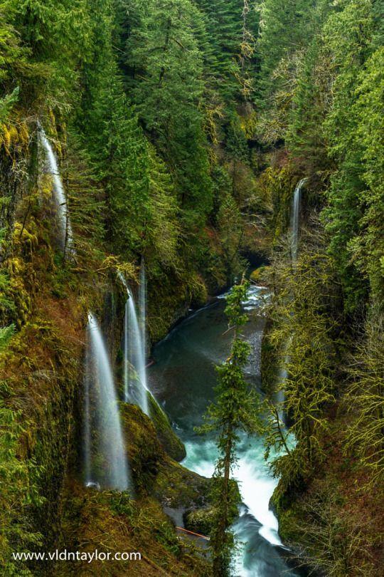 Eagle Creek Trail, Oregon in 2019 | Oregon waterfalls ...