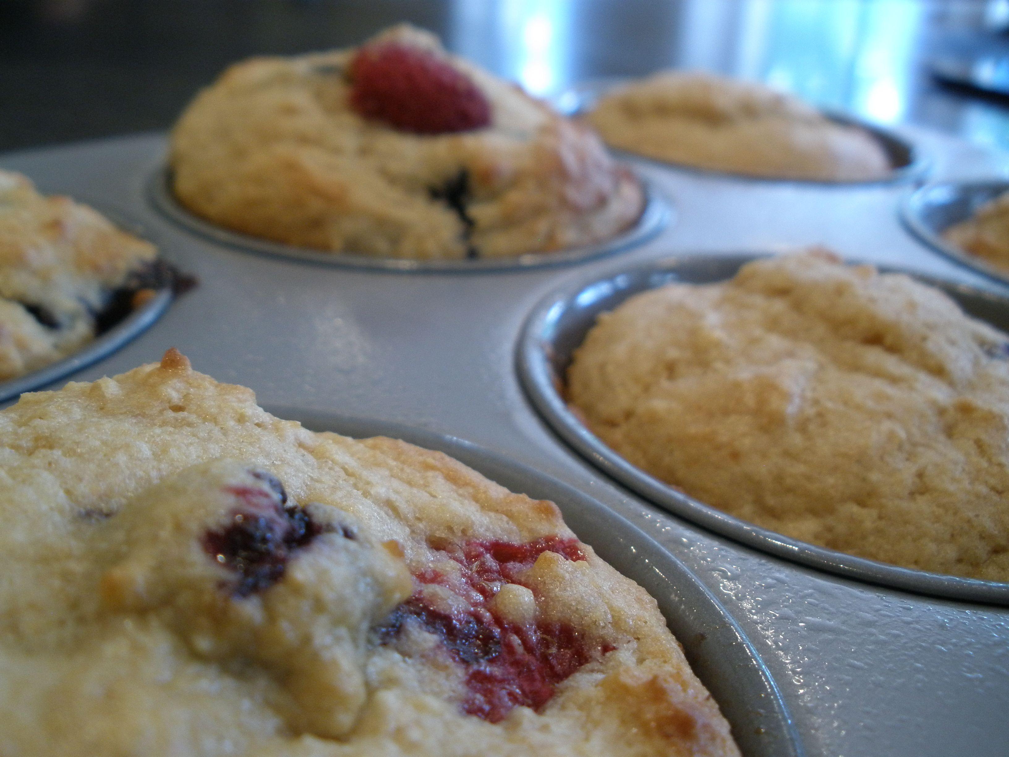 Kodiak cakes berry muffins kodiak cakes kodiak cakes