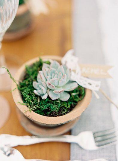 Da kann das Hochzeitsdinner doch beginnen! #plant #pflanzenfreude #pflanze #plant #hochzeit #planter #wedding