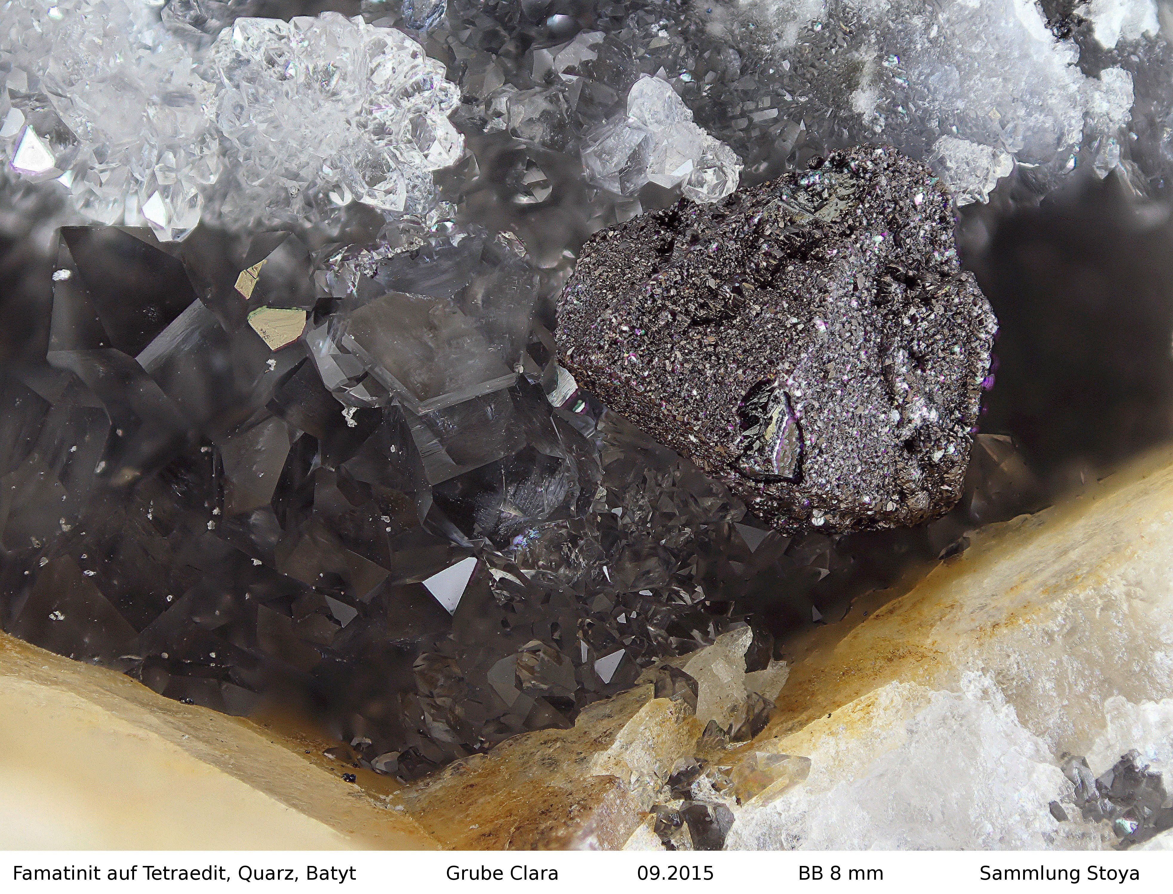 Famatinit auf Tetraedit  Clara Mine, Rankach valley, Oberwolfach, Wolfach, Black Forest, Baden-Württemberg, Germany Copyright © Stoya