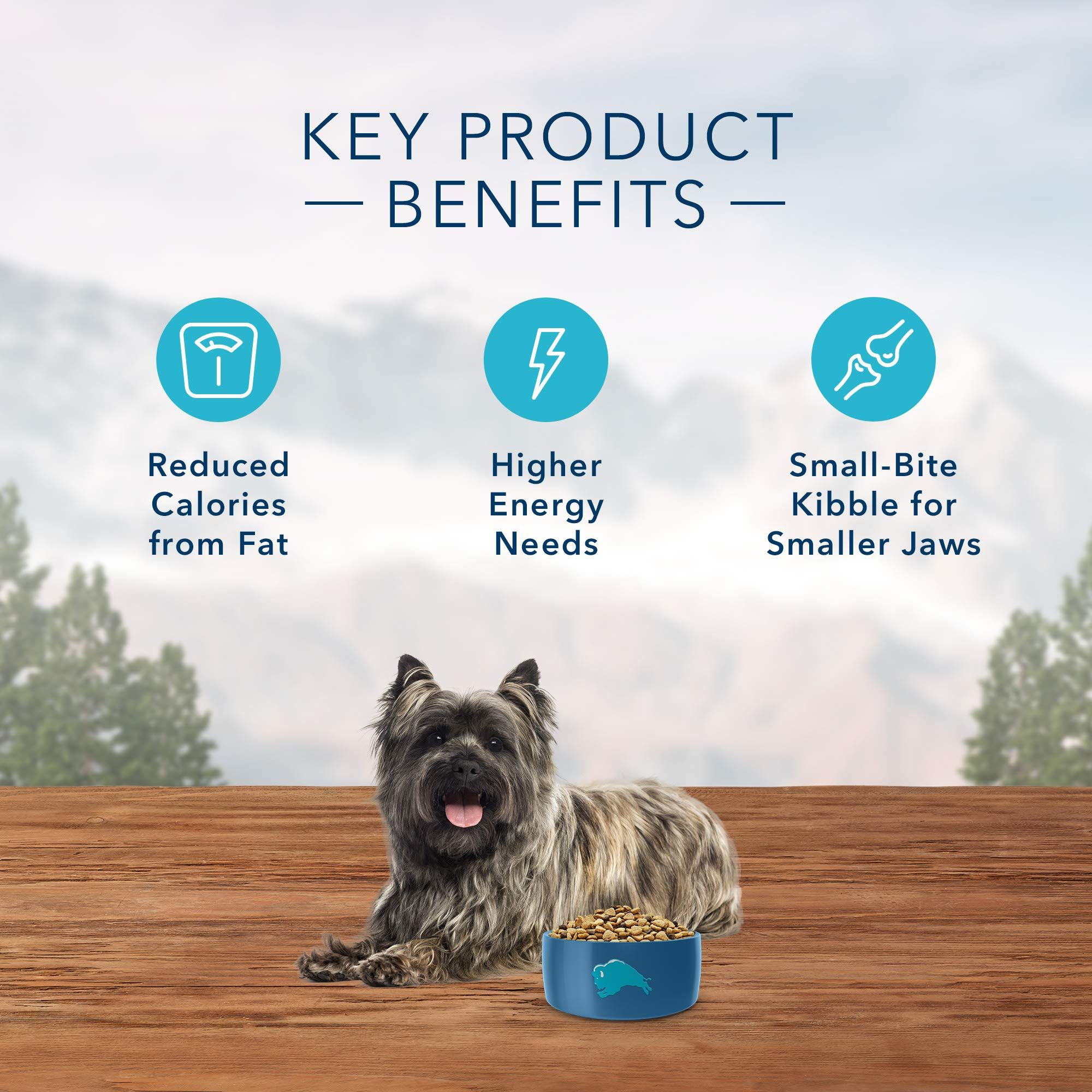 Blue Buffalo Wilderness High Protein Grain Free You Can Get More