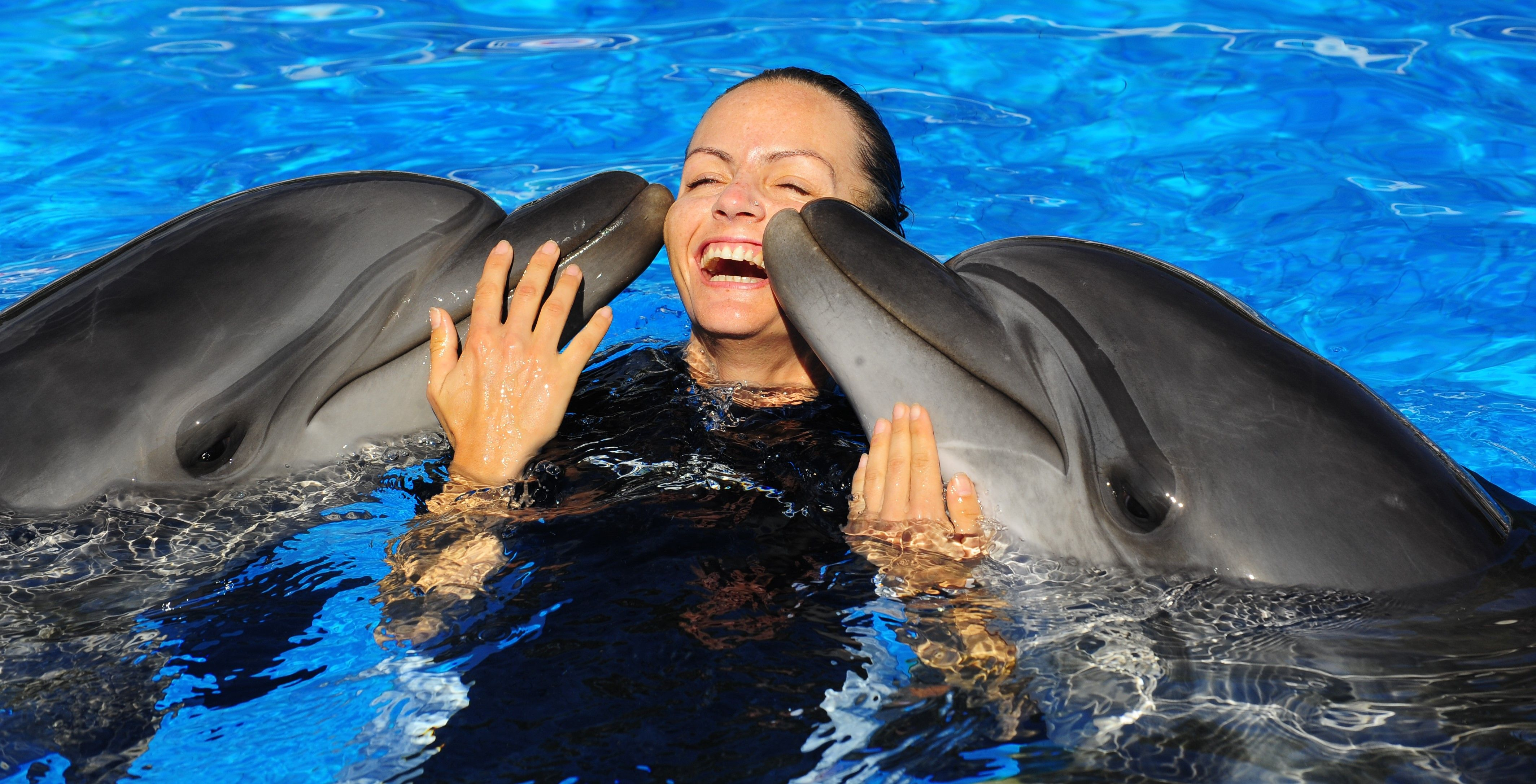 Люди дельфины картинки