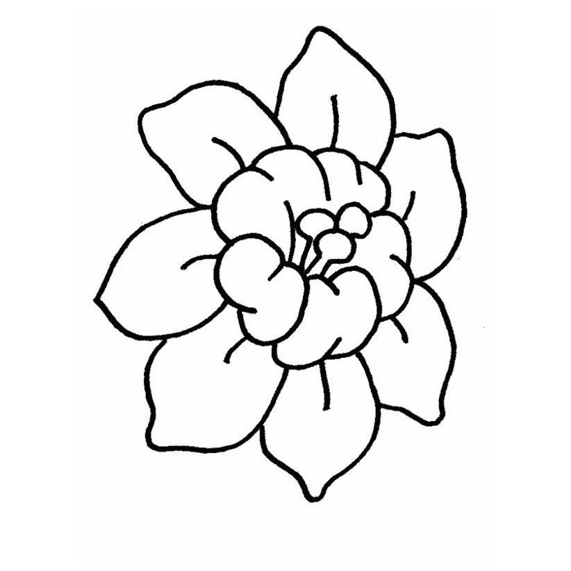 Dibujos De Flores Modernas Para Colorear Flor Hawaiana Dibujo Paginas Para Colorear De Flores Flores De Dibujos Animados