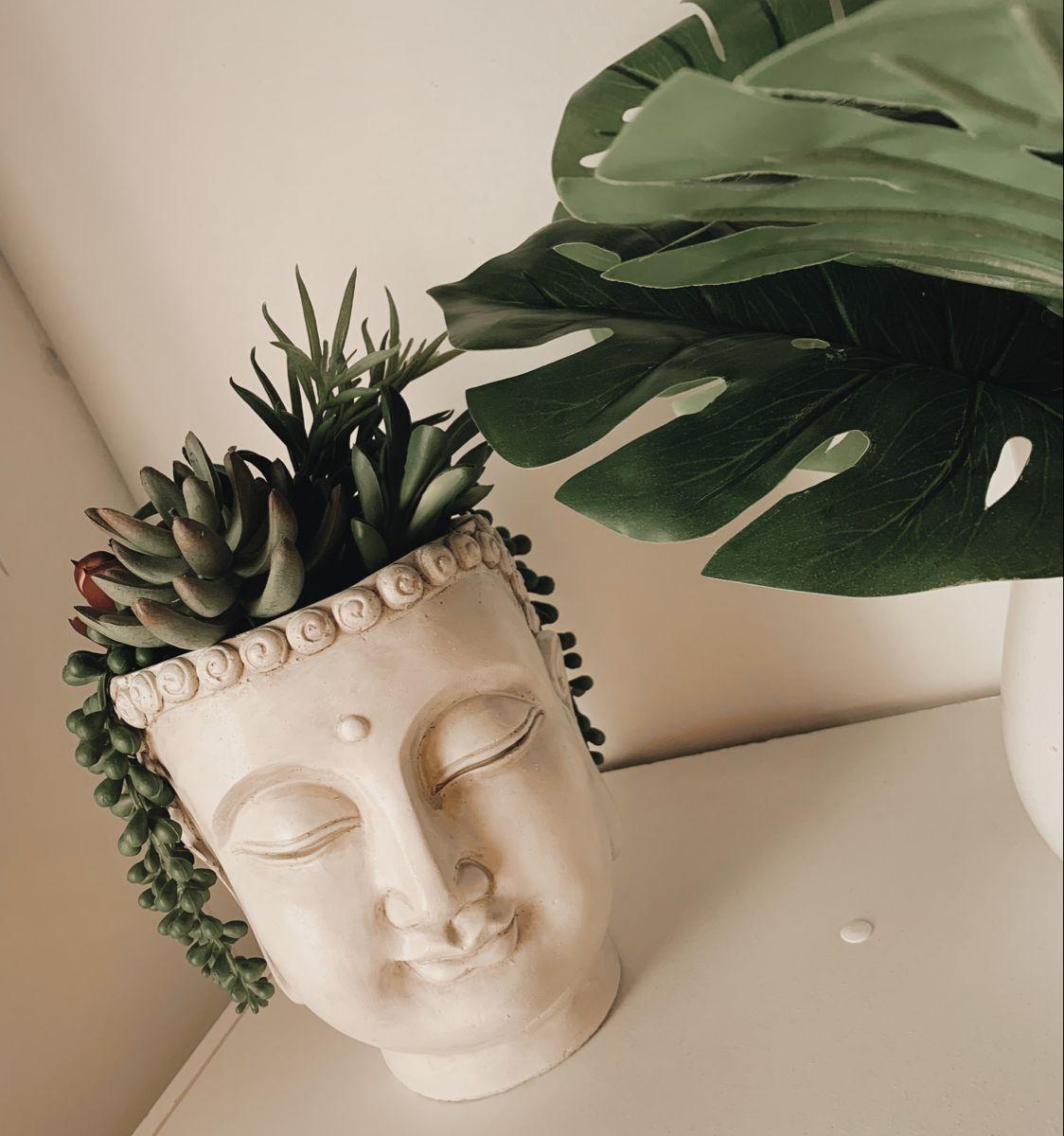#plants #planter #buddha #buddhadecor #tropicaldecor #roomdecorideas #boho #bohodecor