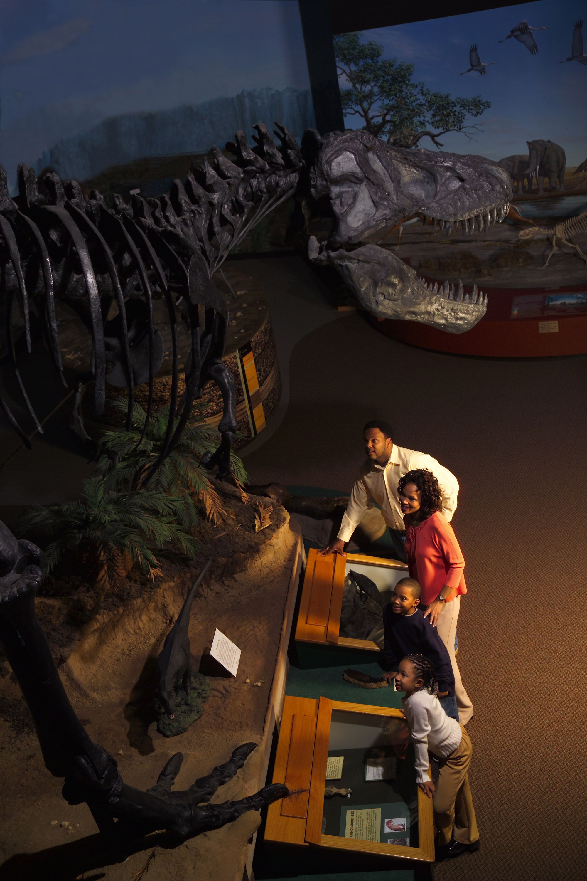 Burpee Museum - Rockford, IL From Jane the T-Rex and Homer the ...