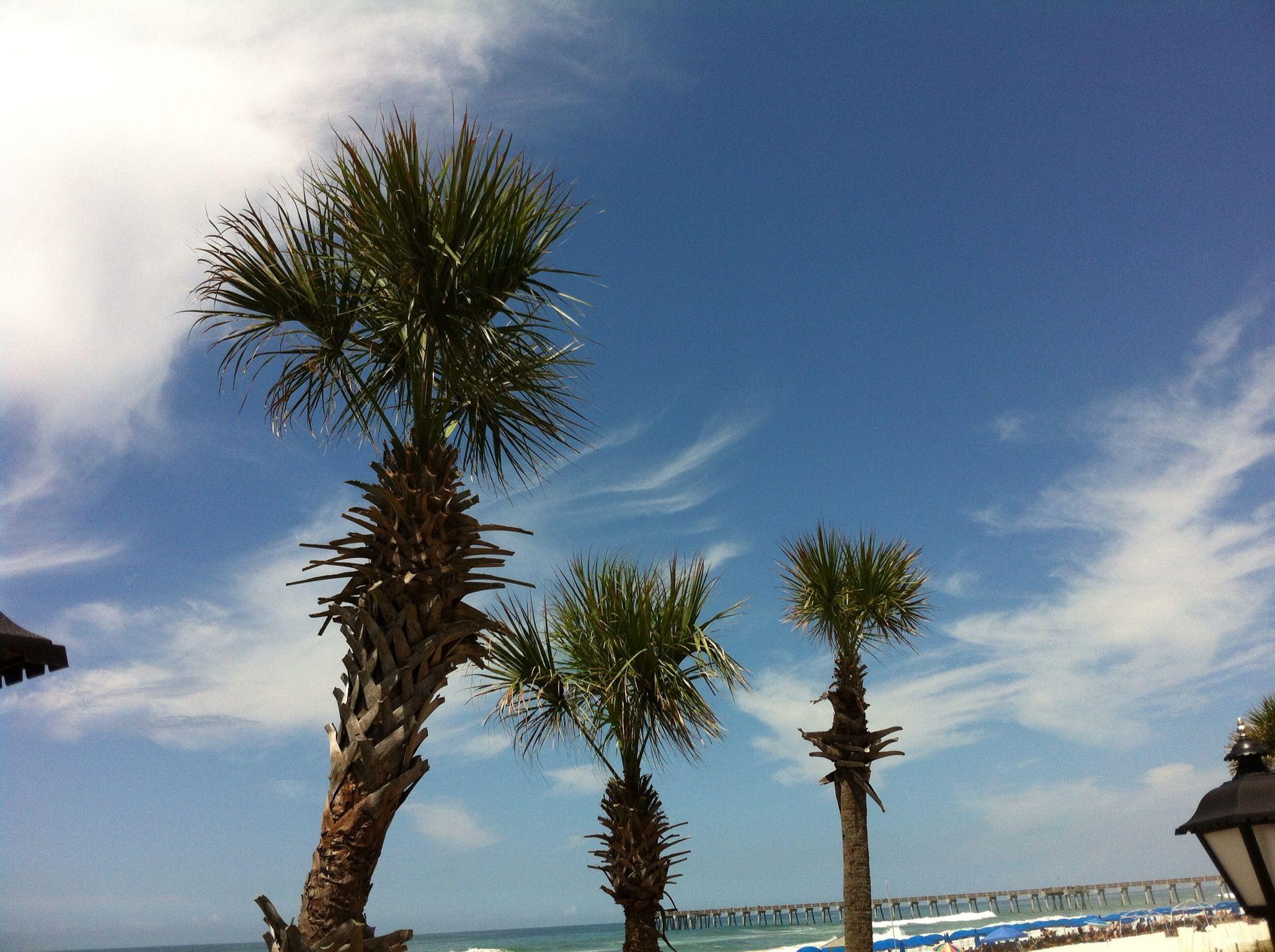 Panama City Beach, Florida Panama city panama, City
