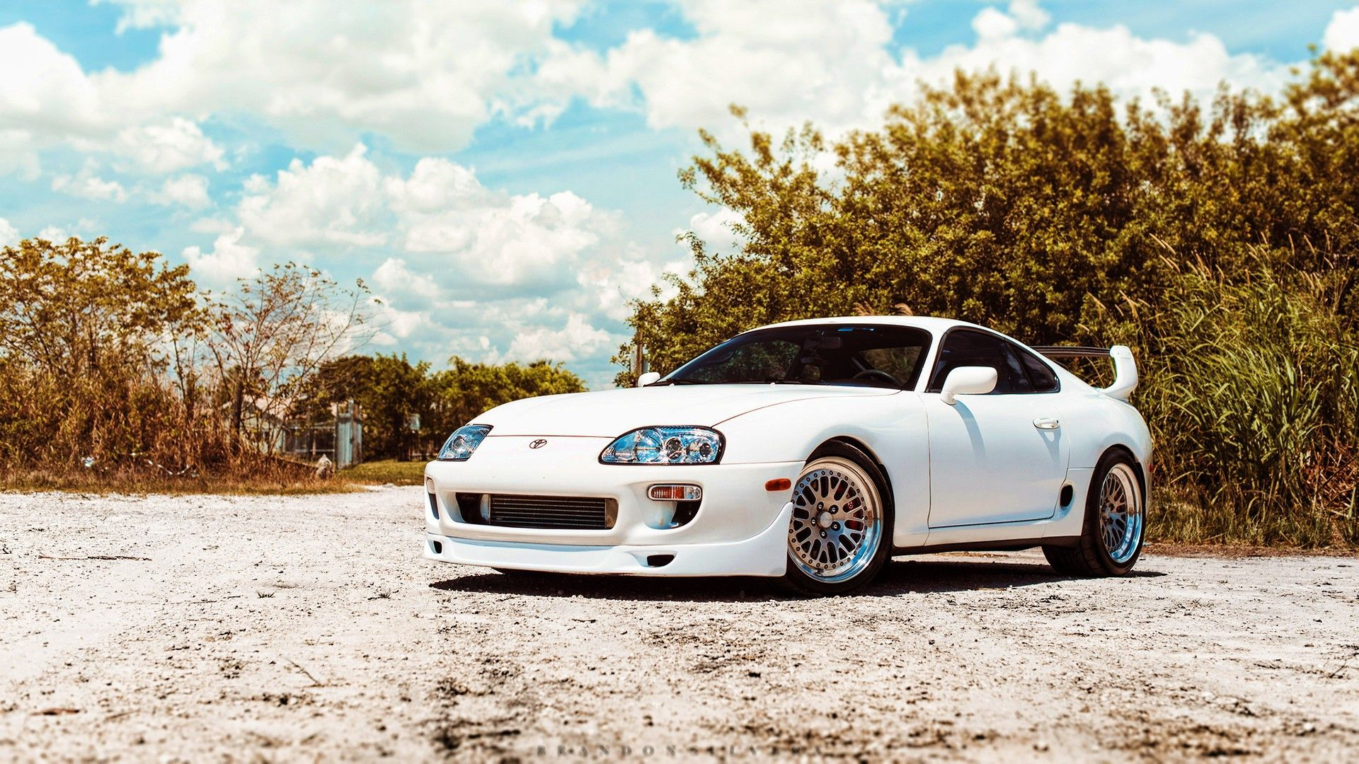 Swirl Marks On White Car
