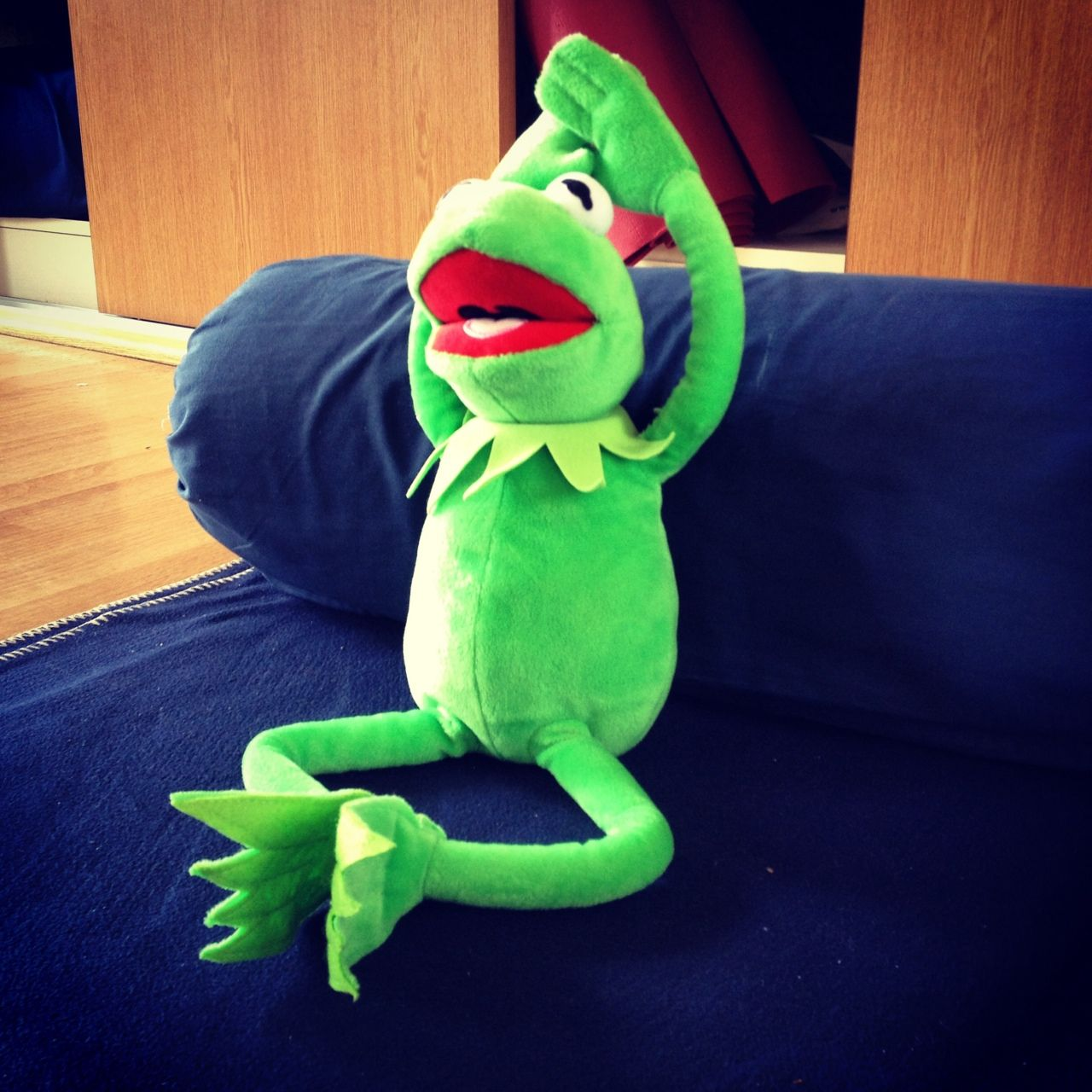 Pin on a photo a day of kermit in may