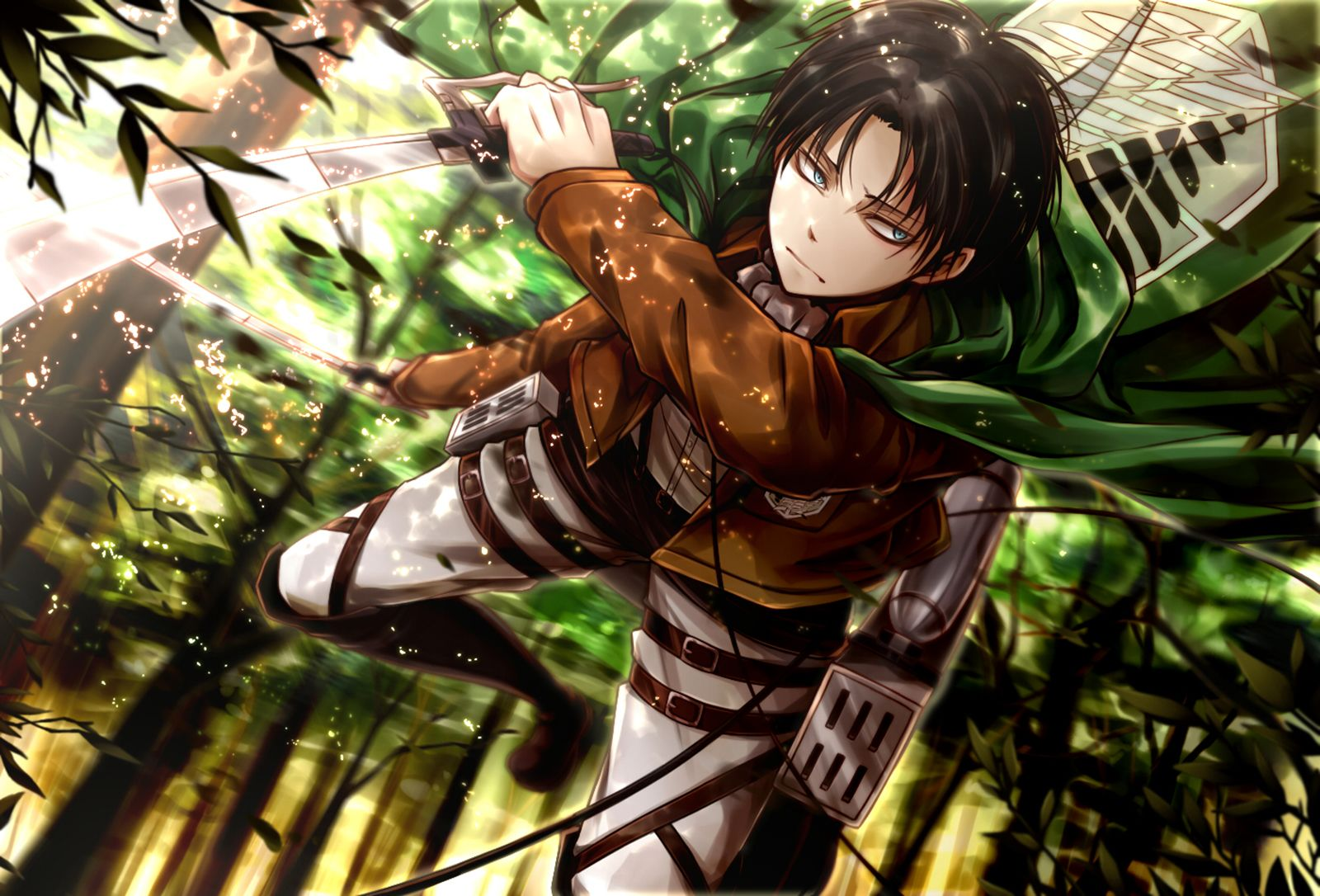 Anime Attack On Titan Levi Ackerman Shingeki No Kyojin