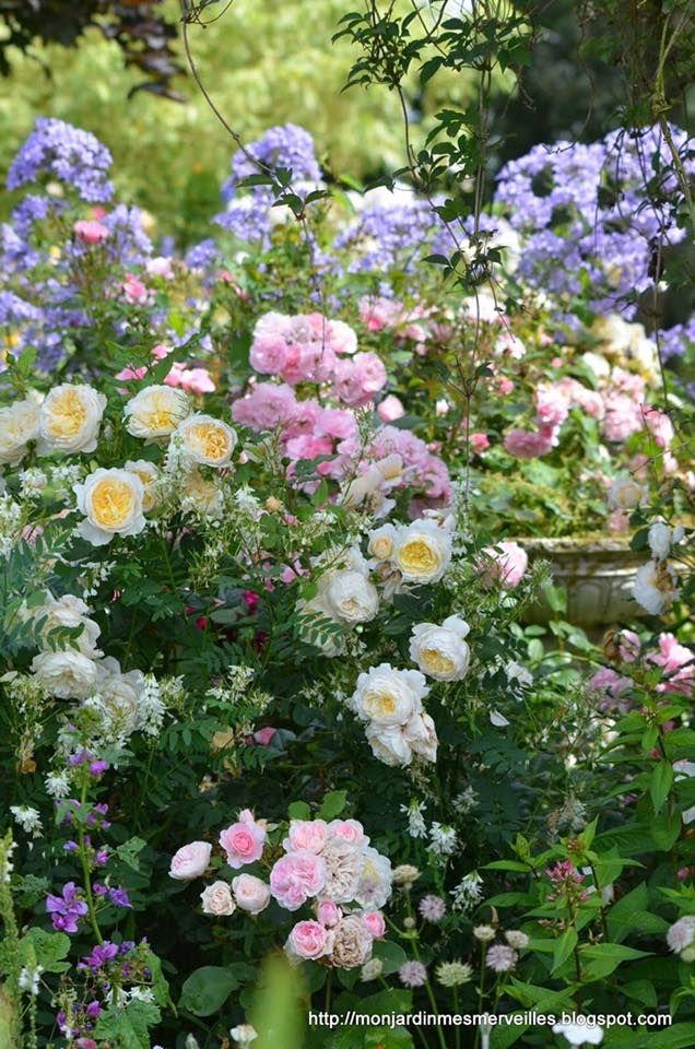 Beautiful Garden~~~ | Traditional Landscape | Pinterest | Gardens ...