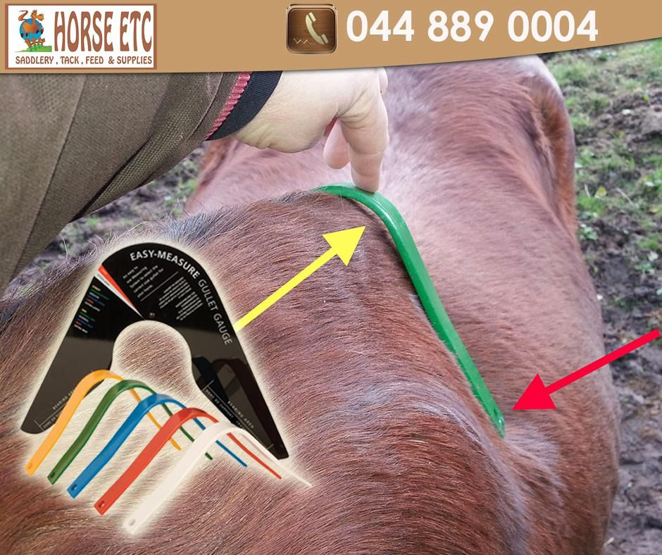 Get your easymeasure gullet gauge from horseetc we