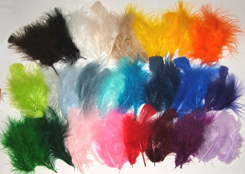 Wow Lots Of Feathers In One 1 4 Pound Bag Hand Sorted For Quality Your Choice 29 Vibrant Colors 3 8 Length Rox 550 Count
