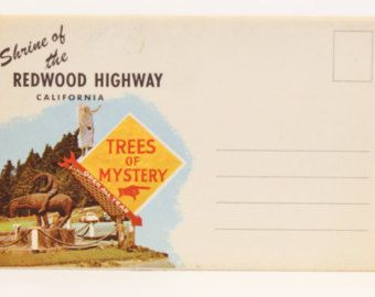Redwood Tree Highway in California - Vintage Postcard Folder on Linen paper