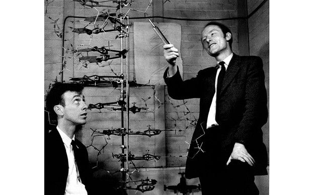 James Watson And Francis Crick With The Original Model Of Dna In 1953