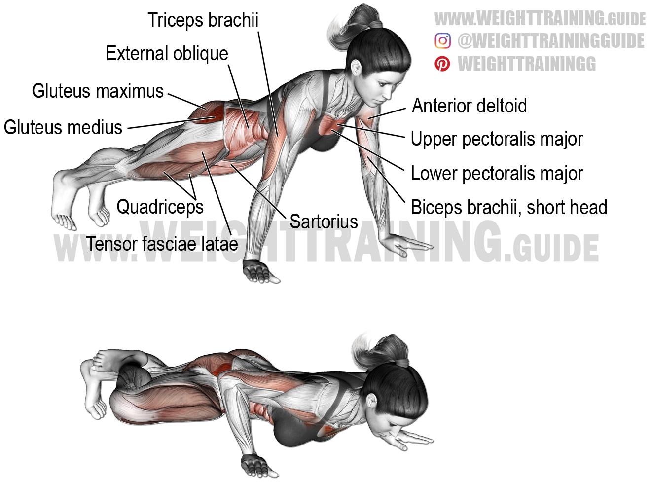Spiderman push-up exercise instructions and video