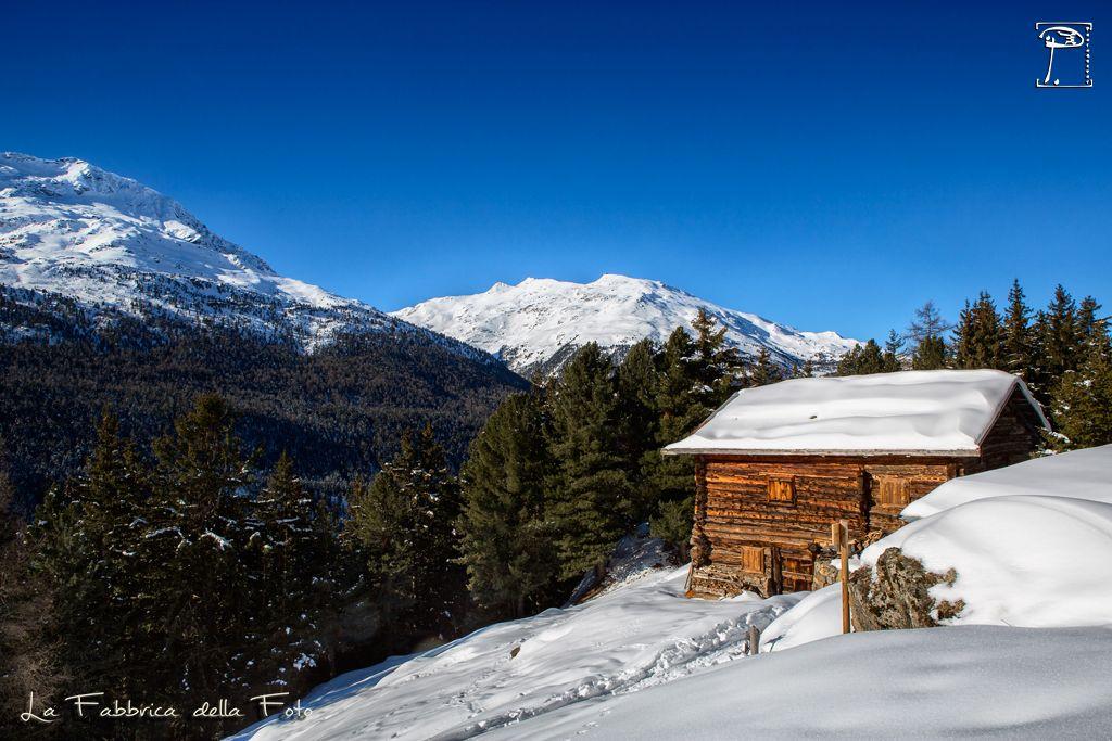 www.lafabbricadellafoto.com #mountain #snow