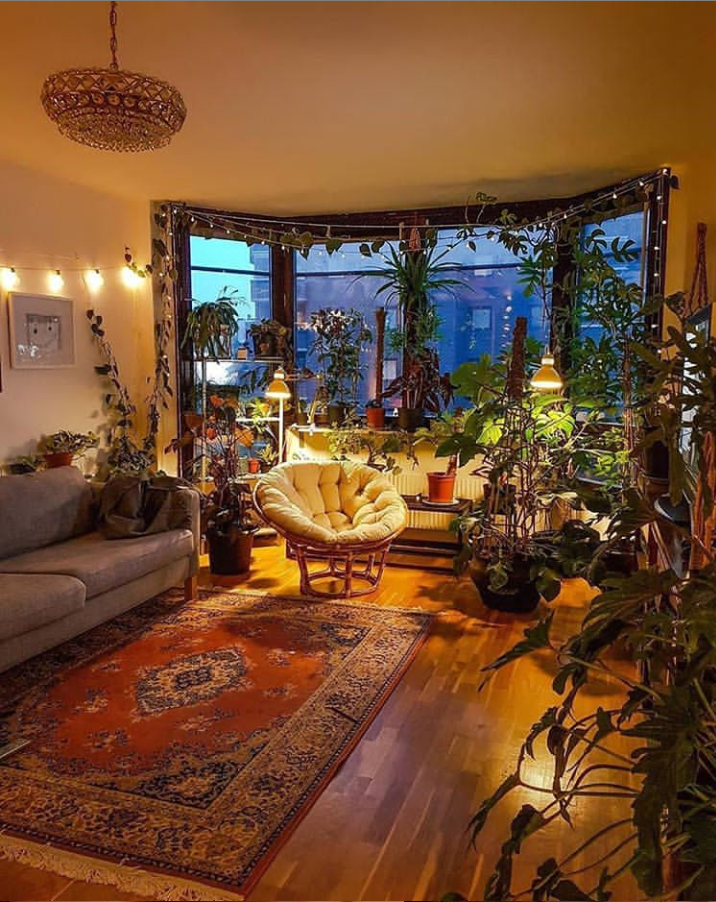 29 Lovely House Plants Decor Indoor With Low Lights For Better Air Purifying Page 22 Of 29 Latest Fashion Trends For Woman In 2020 Plant Decor Indoor Trendy Living Rooms House Plants Decor