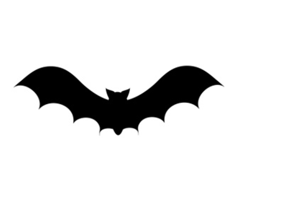 Livin Life Archives The Bold Abode Bat Silhouette Halloween Silhouettes Halloween Bats
