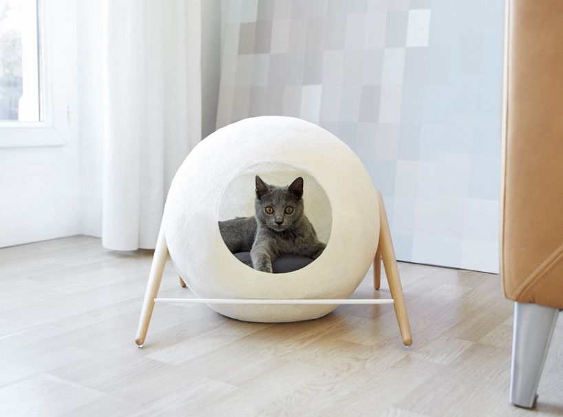 Amazing Cat Cocoons: Cozy Feline Furniture Fits Into Modern Homes